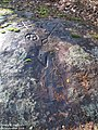 Crow Mountain Petroglyph.jpg