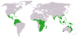 Cycads world distribution.png