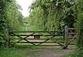 Cycleway from Draycote water to Draycote village - geograph.org.uk - 1297460.jpg
