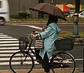 Cycling in the Rain, Osaka (11106734246).jpg