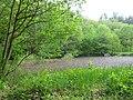 DSC02264 Teich zur Aufzucht autochthoner Fischarten.,.jpg