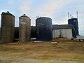 Dairy Farm with Four Silos - panoramio (4).jpg