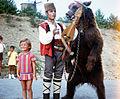 Dancing bear in Bulgaria about 1970 3.jpg
