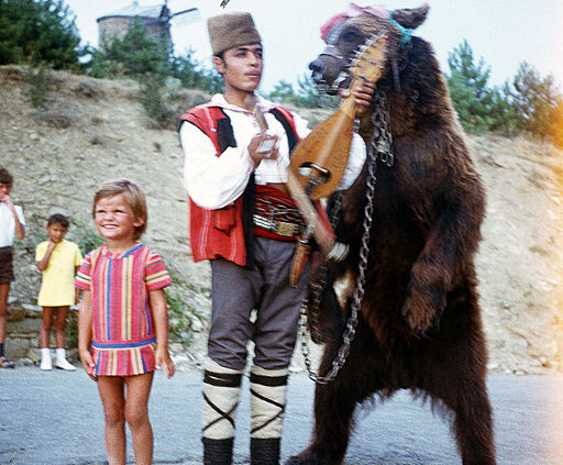 Dancing bear in Bulgaria about 1970 3