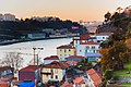 DanielAmorim-Fotografia-Portugal 41.jpg
