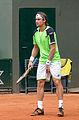 David Ferrer - Roland-Garros 2013 - 015.jpg