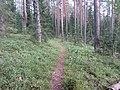 Degučių sen., Lithuania - panoramio (191).jpg