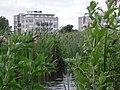 Delft - 2009 - panoramio - StevenL (3).jpg