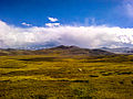 Deosai Plains Heaven.jpg