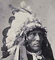Detail, Portrait of Keeps the Mountain, a Sioux Indian, c 1898 Wellcome L0036501 (cropped).jpg