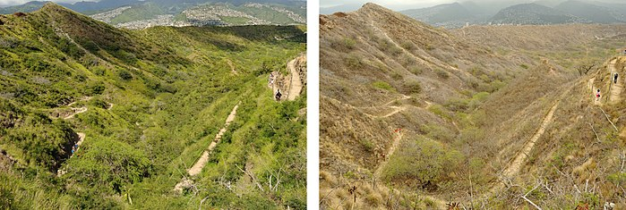 Wet and dry seasons Diamond Head Hike - Wet & Dry Seasons.jpg