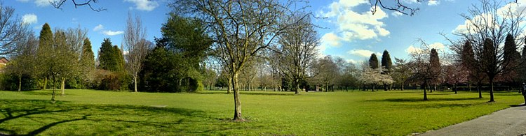 Flat grassy area dotted with various kinds of trees