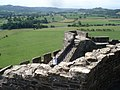 Dinefwr Castle and Afon Tywi - geograph.org.uk - 539288.jpg