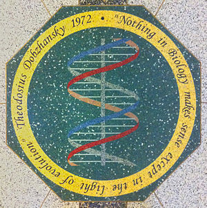Nothing in Biology Makes Sense Except in the Light of Evolution - Mosaic medallion in the floor of the main hall of the Jordan Hall of Science, University of Notre Dame.