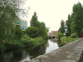 Anglesea Road -  The River Dodder flows by Anglesea Road