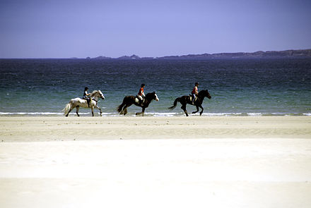 Horse riding on Tramore Beach in Downings Donegal beaches (2579124526).jpg