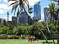 Downtown Scene with Palms and High-Rises - Sydney - Australia (11215618046).jpg