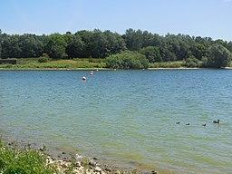 Draycote Water - panoramio (2)