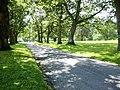 Driveway at Lanhydrock - geograph.org.uk - 51057.jpg