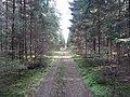 Dusetų sen., Lithuania - panoramio (93).jpg