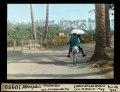 ETH-BIB-Memphis, Eselreiter mit Sonnenschirm-Dia 247-10950.tif