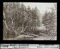 ETH-BIB-Miocän-Landschaft (Nord-Deutschland)-Dia 247-02461.tif