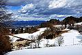 Ebenthal Berg 15 Buschenschenke Mörtl 16032010 702.jpg