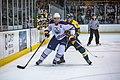 Edmonton Oilers Rookies vs UofA Golden Bears (15275352115).jpg