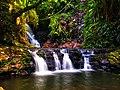 Elabana Falls in Lamington National Park.jpg
