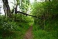 Elizabeth Township, PA, USA - panoramio (15).jpg