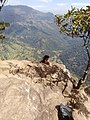 Ella rock- View from the top.jpg