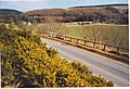Ellemford Bridge and Whiteadder Water Valley - geograph.org.uk - 162986.jpg