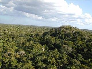 Maya Biosphere Reserve