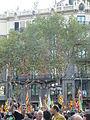 Enric Batlló P1150795.JPG