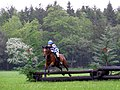 Equestrian event at New Park, Brockenhurst, New Forest - geograph.org.uk - 172479.jpg