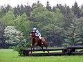 Equestrian event at New Park, Brockenhurst, New Forest - geograph.org.uk - 172479.jpg