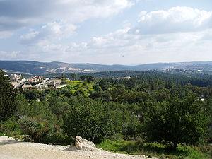 Jewish National Fund - Eshtaol Forest planted by JNF