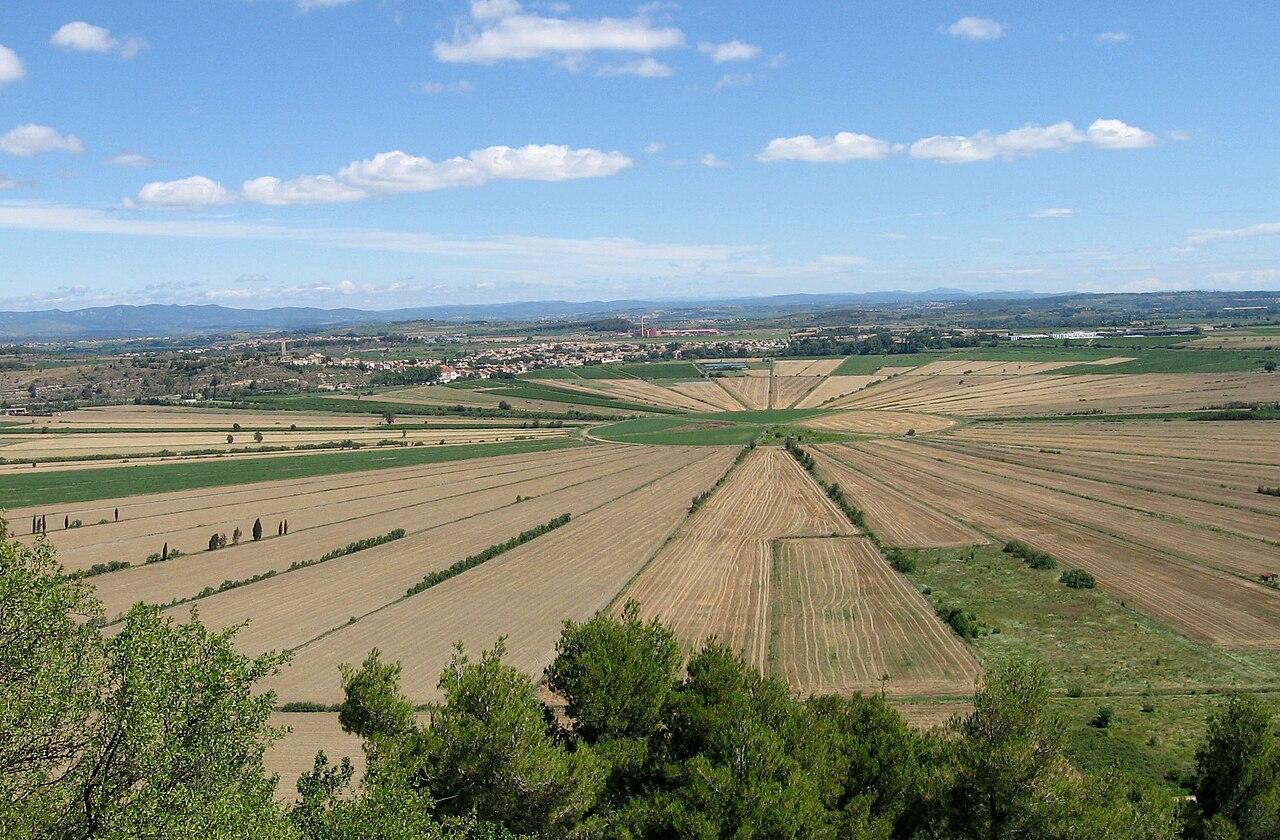 Dans un paysage de campagne, des champs disposés en rayons convergent vers un espace herbager central de forme circulaire.