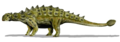 Euoplocephalus BW transparent.png