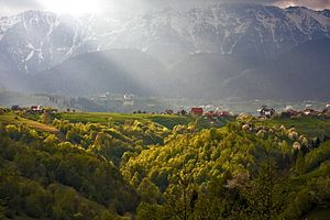 Evening rays over Piatra Craiului Mountains.jpg
