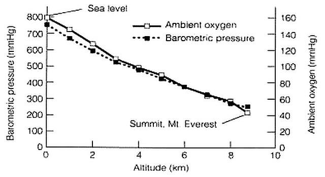 Everest Oxygen Graph