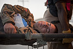 Exercise, Exercise, Exercise! 121012-F-SI013-204.jpg