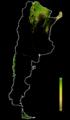 FLII Argentina.png