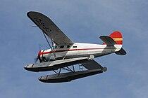 FQI Fly.jpg