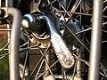 Fahrrad-detail-22.jpg