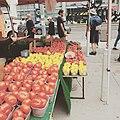 Farmer's market at Mel Lastman Square.jpg