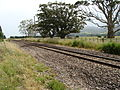 Fernside railway station 01.JPG