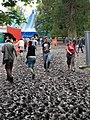 Festival mud - geograph.org.uk - 1304865.jpg