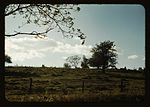 Field or pasture1a34437v.jpg