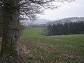 Fields near Hazel Knap - geograph.org.uk - 1232234.jpg